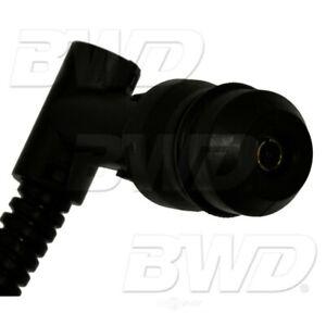 Diesel Glow Plug Wiring Harness Right BWD 261001