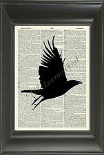 ORIGINAL Bird in Flight Vintage Dictionary Page Art Print - Illustration NO.548D