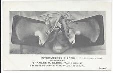 Taxidermist's Trade Card, Image of Deer Heads with Interlocked Horns, 1909