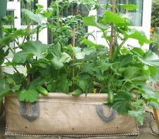 Good Value 130 ltrJumbo Growbags Ideal Vegetable/Salad Planter (I)