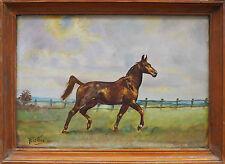 Tableau équitation : Cheval au trot HSP signé (à déchiffrer) - 1969