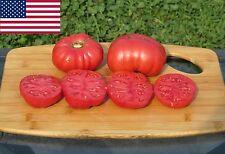 Red Calabash Organic Tomato Seeds- Rare Heirloom Variety-  30+ 2017 Seeds