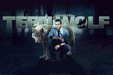 """Teen Wolf Tv Show Silk Cloth Poster 20 x 13"""" Decor 05"""