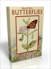 Beautiful Butterflies - more than 500 public domain illustrations on DVD
