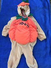 Disney Store WINNIE THE POOH as a PUMPKIN Halloween Costume Baby 18 To 24 Months