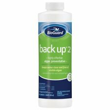 BioGuard Back Up Algaecide - 1qt