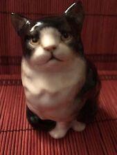 Royal Doulton Black & White Persiam Cat Figurine Hn 999