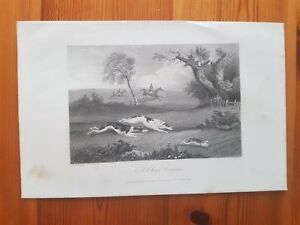 19th Century Engraving A CLEAR COURSE, Rogerson & Tuxford