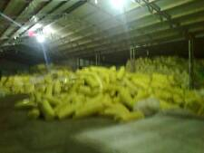 insulation  batts roof save $$$$$$$$$$$$