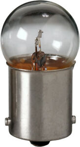 License Light Bulb-Sedan Eiko 67-BP