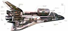 Space Shuttle Cutaway Nasa Poster 18 X 36 24inx36in