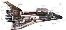 Space Shuttle Cutaway Nasa Poster 18 X 36 24inx36in