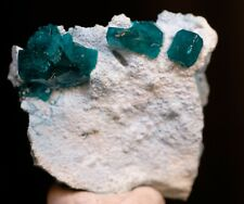 RARE!  Dioptase on Plancheite, Tsumeb Mine, Namibia.  Ex. Coll. Clive Queit!
