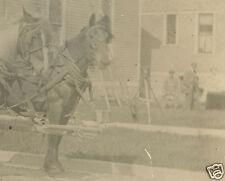 VINTAGE ANTIQUE TRIPOD CAMERA GHOST PHOTOGRAPHER HORSES JOHN VAN HOLT RPPC PHOTO
