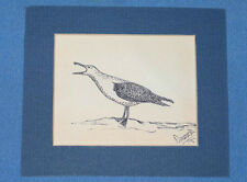 COUNCE Original Pen Ink Seagull Scene Art Illustration Drawing SIGNED FREE SHIP