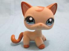 Littlest Pet Shop 1024 Caramel Swirl Curl Cat Kitten Brown Tan Lose LPS From USA