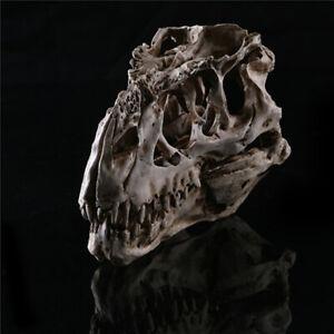 Resin Model T-Rex Tyrannosaurus Dinosaur Skull Statues Sculptures Ornament Gift