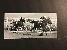 SEATTLE SLEW AFFIRMED Photo Horse Racing 1978 MARLBORO CUP