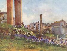 ROME. A Forum base of Temple Saturn 1905 old antique vintage print picture