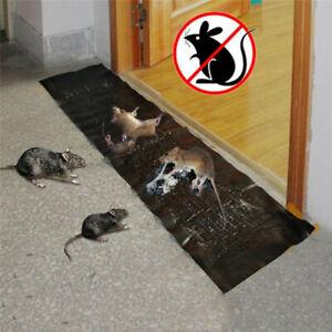 "47"" Mice Mouse Glue Traps Rodent Catcher Rat Board Super Sticky Snake Bugs Roach"