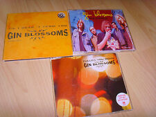 3 CD Singles indie Gin Blossoms Hey Jealousy Follow you down till i Hear it from