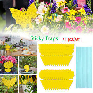 41Pcs Yellow Sticky Fly Trap Paper Traps Fruit Flies Insect Aphids Glue Catcher