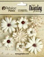 Mini Mix CREAM 8 Teastained Paper Flowers 20-35mm across Darjeeling Petaloo Ver