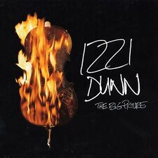 IZZI DUNN = the big picture = Electro Nu Jazz Broken Beats Hip Hop Sounds !!!