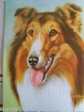 DRAW AND PAINT ANIMAL EXPRESSIONS WALTER WILWERDING WALTER FOSTER STEP BY STEP