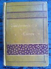 Antique Book Saunterings In Europe Charles Wood 1882 VG Beautiful Cover