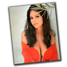 Lana Wood FINE ART Celebrities Vintage Rare Photo Glossy Big Size 8X10in Q050