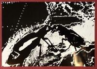 Ingrid Beckmann, Hugo, Photographie, 1990, handsigniert und datiert