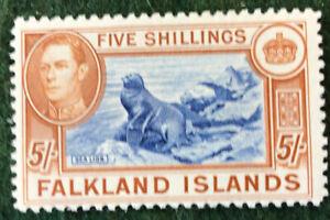 Falkland Islands George Vl 5/- Definitive MNH Unmounted SG161 Value £150.00 2018