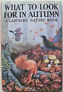 Ladybird Book – What to look for in Autumn & DJ – 536 – 2015 Edition - Mint
