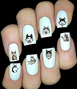 Husky Chien Autocollant Stickers ongles  nail art manucure déco water decal