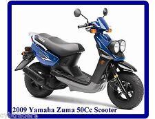 2009 Yamaha Zuma 50Cc Scooter  Refrigerator / Tool Box  Magnet Man Cave Item