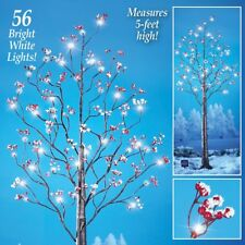 5 Ft. Tall Solar Powered Lighted Tree with Frosted Berries Garden Decoration