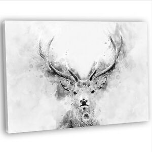 Abstract Watercolour Stag Deer Head Canvas Print Framed Wall Art Picture B&W