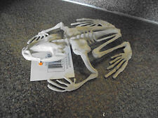 """Frog Toad Skeleton Fossil Prop Halloween Haunted House Fake Weird 7"""" Boney New"""