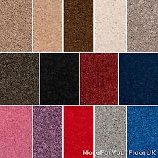 Carpet Cheap Carpets Twist Pile Quality Feltback Carpet - Lounge Bedroom