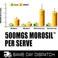 500mg Morosil per Serve - fat burner supplement - 35 serves Apple-Berry
