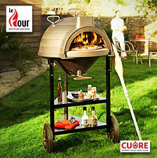 Price cut on Le Four Multifunction Oven - An amazing new product from France!