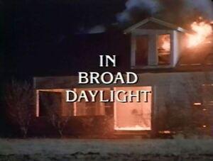 In Broad Daylight - 1991 Brian Dennehy, Cloris Leachman (UK dvd disc)