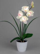 Deko-Blumen & künstliche Pflanzen aus Kunststoff Formano Dünger