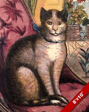 PAMPERED CAT SITTING ON CHAIR PET ANIMAL ART PAINTING REAL CANVAS PRINT