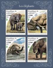 Guinea  2018    Elephants fauna   S201811