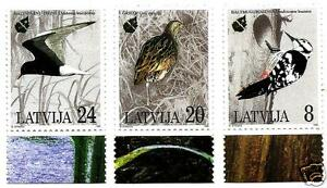 Latvia 1995 European Nature Conservation Year Birds woodpecker , seagull MNH