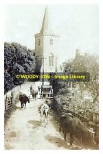 rp13356 - Cattle in lane near Brading Church , Isle of Wight - photo 6x4