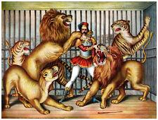 "20x30""Decoration CANVAS.Interior room design art.Lion tiger tamer.Circus.6434"