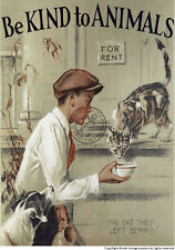 Vintage Poster Cat Dog Advert A4 ART Retro Animal PET Print